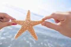 Couplez les mains du ` s tenant des étoiles de mer à la plage Images stock