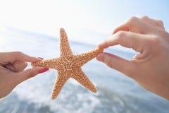 Couplez les mains du ` s tenant des étoiles de mer à la plage Images libres de droits