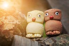 Couplez les oiseaux, deux statues sages de hiboux dans le jardin avec la fusée légère chaude Images stock