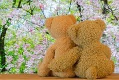 Couplez les ours bruns mignons se reposant sur le bois s'étreignant avec Photos stock