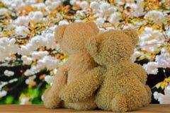 Couplez les ours bruns mignons se reposant sur le bois s'étreignant avec Images libres de droits