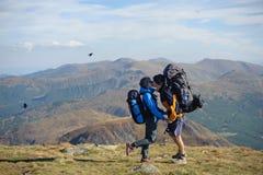 Couplez les randonneurs dans les montagnes de Carpathiens avec des sacs à dos Photographie stock