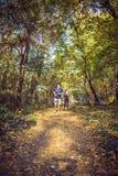 Couplez pulser et courir dehors dans la forêt photos libres de droits