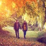 Couplez tenir des mains marchant dans la forêt en automne Image libre de droits