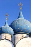 Coupole de la cathédrale de nativité Images libres de droits