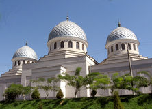 Coupoles 2007 de la mosquée trois de Tashkent Juma Images libres de droits