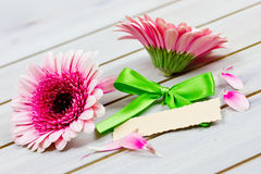 Coupon with flowers Royalty Free Stock Photography