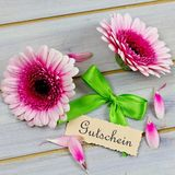 Coupon with flowers. Coupon with pink flowers and green ribbon Stock Photos