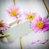 Coupon met bloemen stock afbeelding