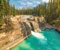 Coups de pied de la rivière de cheval, pont naturel, champ, Canadien les Rocheuses Image stock