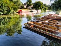Coups de volée alignés sur la rivière à Cambridge Angleterre Images stock