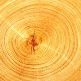 Coupure de bois Photographie stock libre de droits
