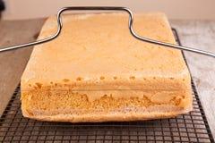 Coupure de l'éponge de gâteau Photo libre de droits