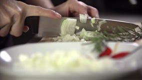 Coupure de l'oignon dans de petites parties dans le mouvement lent clips vidéos