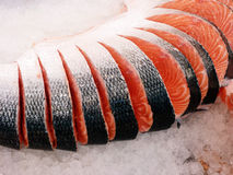 Coupure de saumons rouges Photos libres de droits
