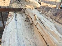 Coupure de scie en bois Photographie stock