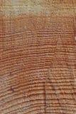 Coupure en bois photographie stock libre de droits