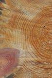Coupure en bois Image stock