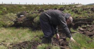 Coupure et tourbe convenable de gazon avec une pelle en marais de mousse en Irlande clips vidéos