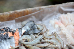 Coupures de fruits de mer images stock