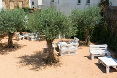 Cour avec l'allocation des places et les oliviers, dans le petit remorquage de pêche Images stock