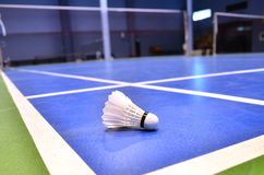 Cour de badminton Photo libre de droits