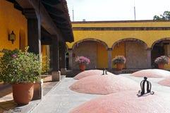 Cour de distillerie de tequila et chambres fortes vieillissantes Photos libres de droits