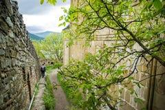 Cour de forteresse d'Ananuri, la Géorgie Photo stock