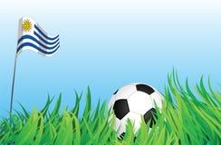 Cour de jeu du football ou du football, Uruguay Illustration Libre de Droits