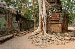 Cour des ruines, Cambodge Photo libre de droits