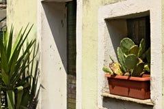 Cour ligurienne de maison avec les vases et la végétation San Bernardino, Cinque Terre images stock