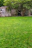 Cour tranquille avec des pissenlits dans le quart historique de Colonia d Photos stock