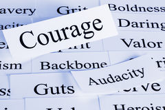 Courage Concept. A conceptual look at courage, backbone, audacity, guts royalty free stock image