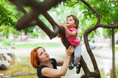 Courageous girl climbing on tree. In a park Stock Image