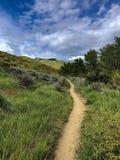 Courant, augmentant, et traînée faisant du vélo de montagne dans les collines de Boise, Idaho Photo libre de droits
