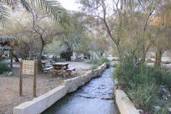 Courant chez Ein Fashkha, oasis de réservation naturelle d'Einot Tzukim dans la Terre Sainte Image stock
