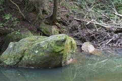 Courant coulant par des rochers image stock