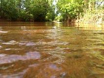 Courant d'eau dans une forêt Photos libres de droits