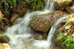 Courant d'eau douce Photo libre de droits