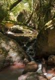 Courant d'eau entre les roches et les rochers de la gorge du Blavet Photos libres de droits