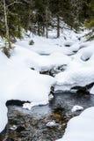 Courant d'hiver avec la neige profonde et les écoulements d'eau dessous photo libre de droits