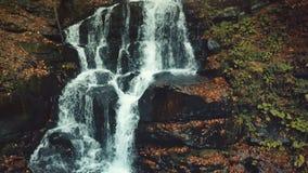 Courant d'or majestueux de cascade de montagne d'automne banque de vidéos