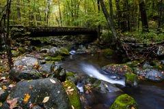 Courant dans l'automne au parc national de montagne fumeuse Image stock