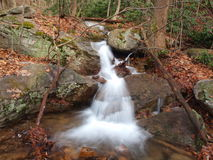 Courant dans Ohiopyle Image stock