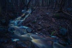 Courant dans une forêt foncée d'automne Photos libres de droits