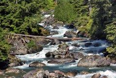 Courant de cascade de montagne en Alaska Photographie stock libre de droits