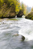 Courant de forêt d'automne Image libre de droits