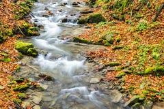 Courant de l'eau d'automne Image libre de droits