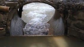 Courant de l'eau dans la crique après pluie banque de vidéos