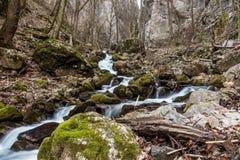 Courant de l'eau en vallée de Zadielska Photo libre de droits